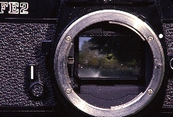 Looking inside the camer, we see the mirror reflects the image up thruogh the camera to your eye.