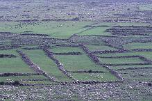 Rock lined pasture and farm land in the Galilee area, photo by Brent VanFossen