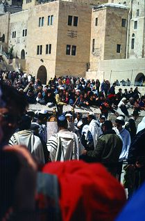 Men pray at the Wailing Wall, photo by Lorelle VanFossen
