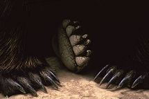 Bear feet, photo by Brent VanFossen