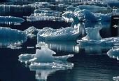 Icebergs floating on Portage Lake, Alaska, photograph by Brent VanFossen