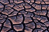 Cracks form in the mud as it dries, Israel, photograph by Brent VanFossen