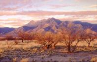 Mountains of Bosque Del Apache, photo by Brent VanFossen
