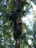 dj tree - climber heading down closeup