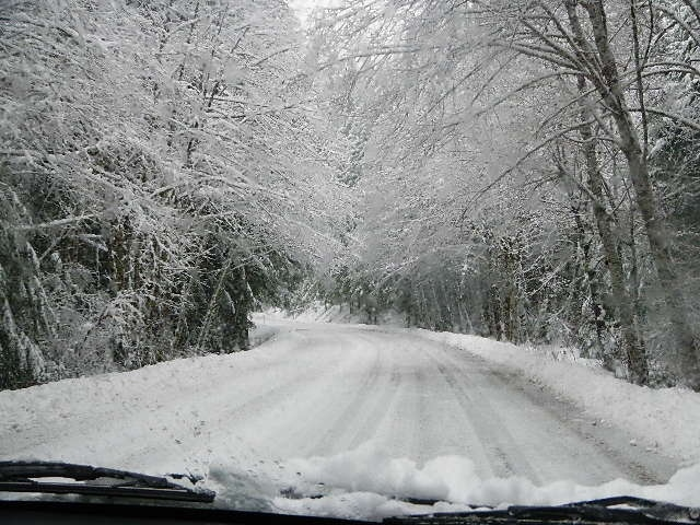 Snow on the road from Breitenbush Hot Springs, Oregon, 2012, photography by Lorelle VanFossen.