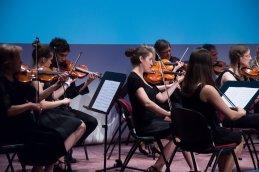 Prve violine...