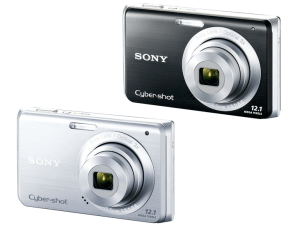 Sony DSC-W190 Manual (camera variant)