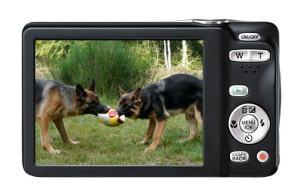 Fujifilm FinePix JX550 Manual - camera rear side