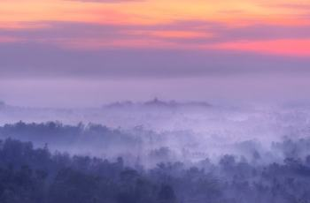 Tips & Trick: How Photographer Capture Photos in The Fog Conditions 1