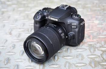 Canon EOS 90D: Produces Great Photos while Bad Light 4