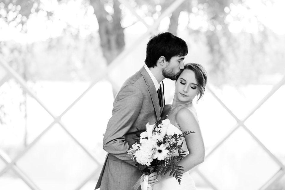 Timeless Wedding Portraits in Bloomington, MN at Normandale Park