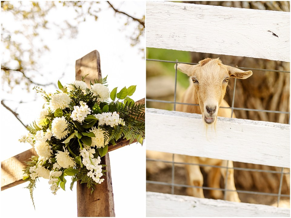 outdoor barn ceremony at Almquist Farm MN
