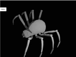 SpiderModelingReference_14