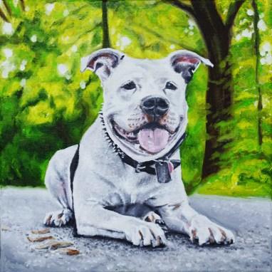 2015-03 – Commissioned Pet Portrait Painting by Cameron Dixon – Cowboy