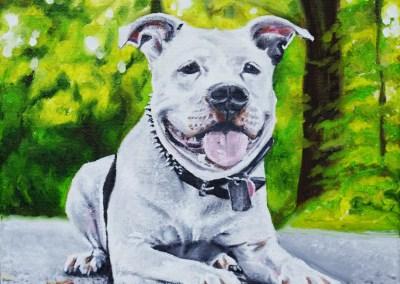 2015-03 - Commissioned Pet Portrait Painting - Cowboy