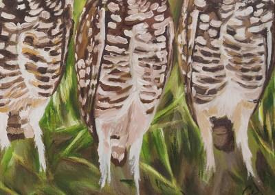 2016-05 - Art Bark - Burrowing Owls - Original Painting by Cameron Dixon - detail-a
