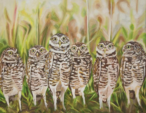 2016-05 – Original Painting by Cameron Dixon – Who? – Burrowing Owls