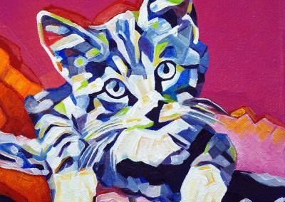 2017-05 - Pop Art Kitten by Cameron Dixon -1080px