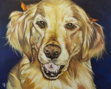 Cameron Dixon - DSC00114-pet-portrait-Mags-front-crop-1080px