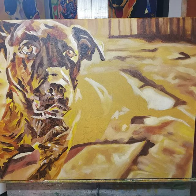Pet Portrait Work in Progress Ursa 16in x 20in x 1.375in  Blocking in colours using acrylic paint prior to reworking with a final coat of oil.  Looking for a custom made painting? www.camerondixon.com