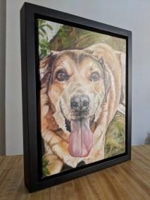 2018-03-Pet-Portrait-Loki-11x14-finished painting