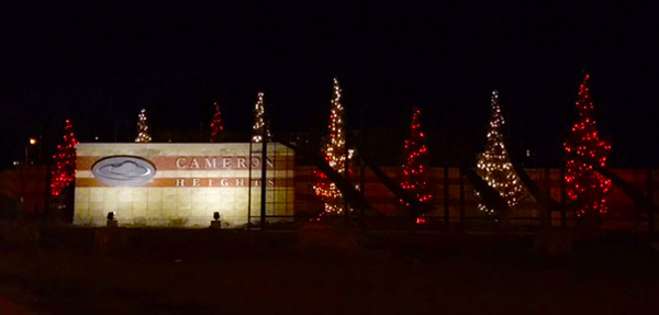 Festive Display of Lights - Cameron Heights