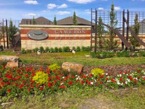 Cameron Heights - Canada 150 - Flower Arrangements