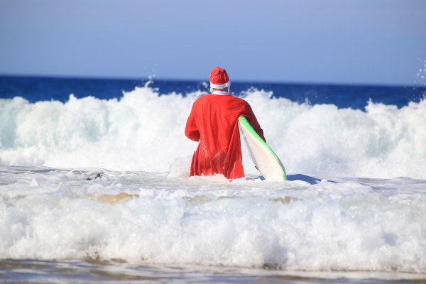 Cameron Patterson & Co Business Accountant - Santa Claus goes surfing