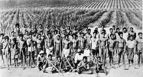 Bundaberg's Hidden Slave Trade