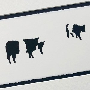 handmade stencilled print of a group of black and white striped cows (Belted Galloway breed) against unprinted plain white background