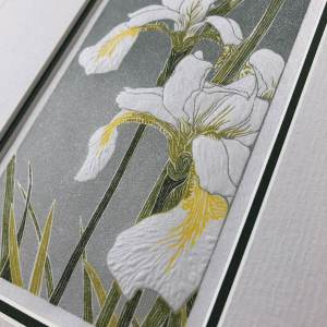 handmade linocut print of white iris flowers against a grade grey background