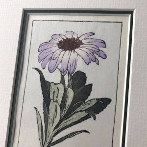 handmade woodblock print of a purple daisy flower with leaves from olearia semidentata New Zealand Tree Daisy against pale blue grey background