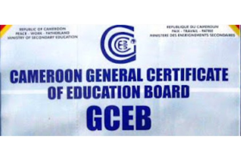 GCE Results 2020 O/A Level Released pdf