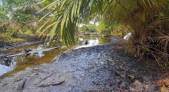 Pollution à grande échelle : La compagnie pétrolière française Perenco mise en examen au Gabon