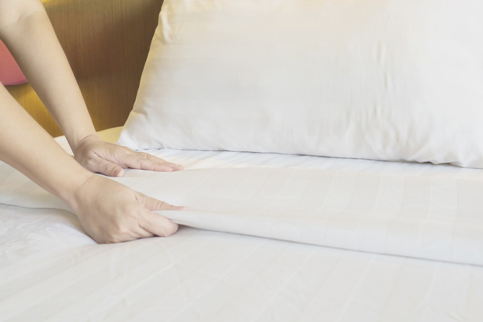 lençol camesa
