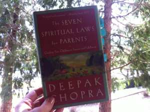 Seven Spiritual Laws for Parents Book