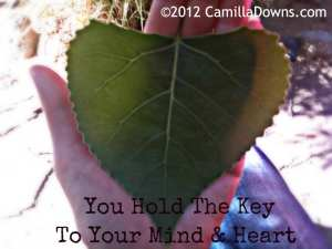 leaf-heart-you-hold-the-key-2012