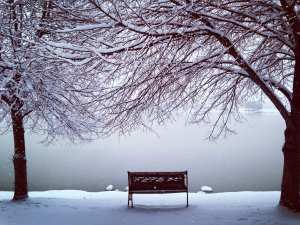 Bench in Snow Vintage Lake Brother Poem 2017