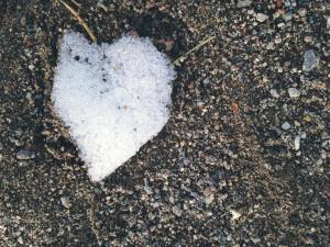 Snow Heart Love Many Forms 2017