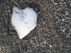 Snow Heart Love Many Forms 2017