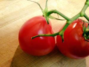 Tomatoes on Vine 11.8.17