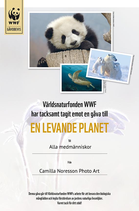WWF gavobevis_Levandeplanet.indd