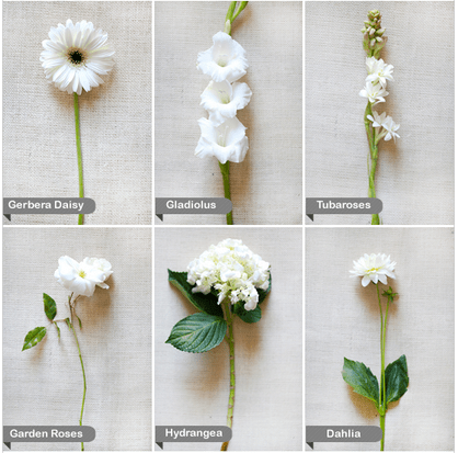 white flowers wedding ideas