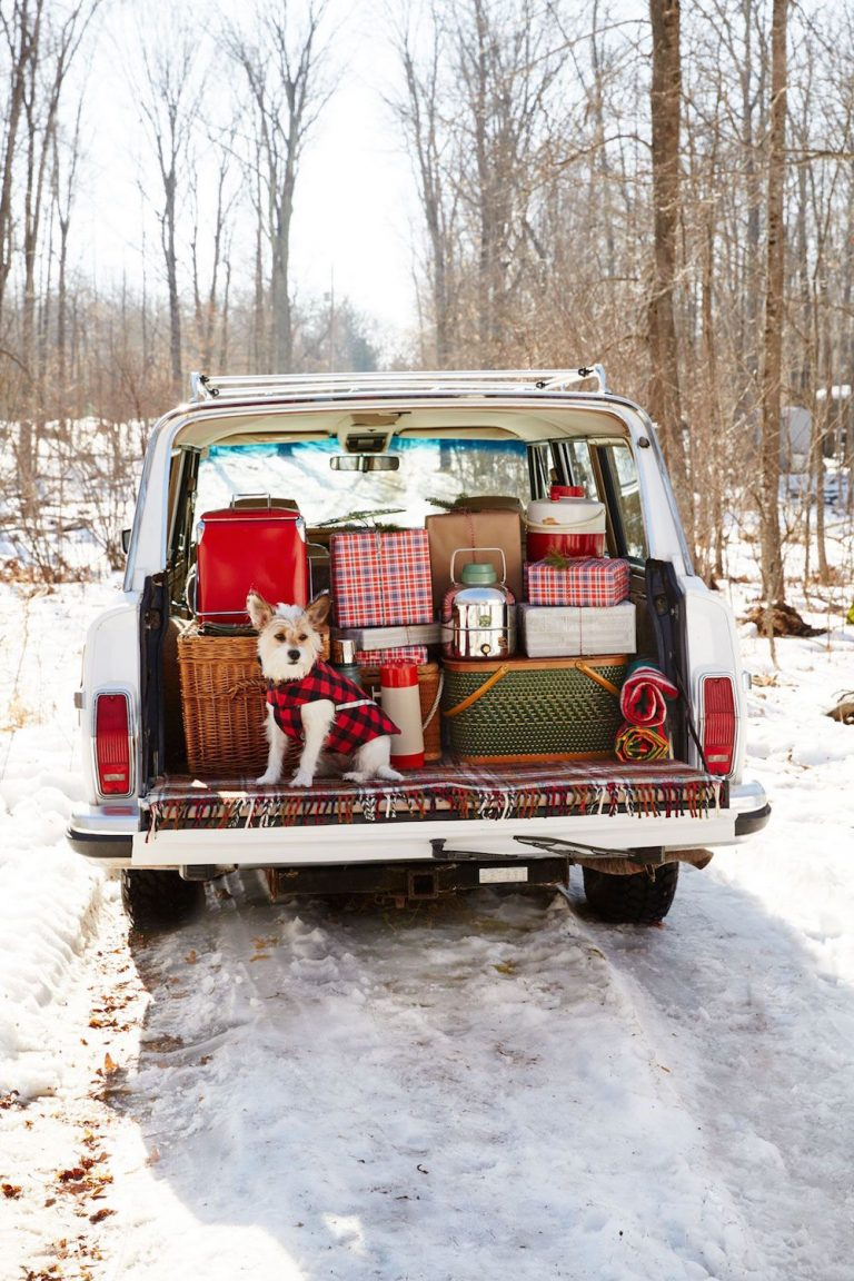Your Ultimate Holiday Road Trip Playlist