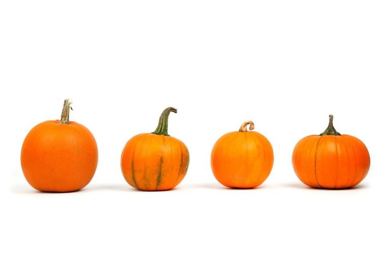 Four pumpkins in a line