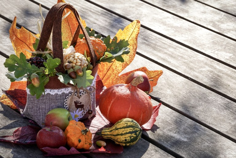 Basket of leaves and squash