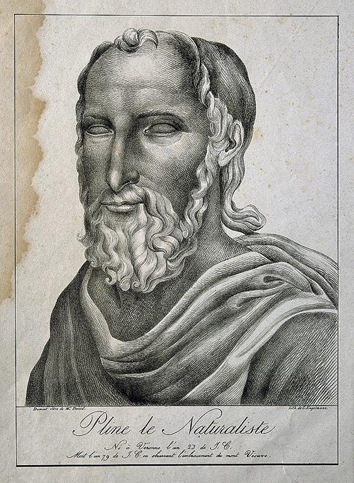Litografía de Plinio el Viejo.