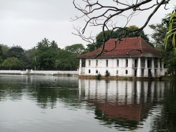 Kandy (71)