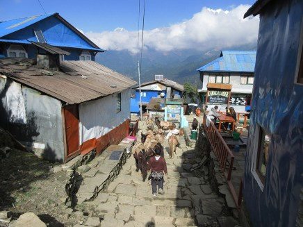 Annapurnas (73)