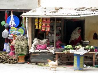 Kathmandu (62)